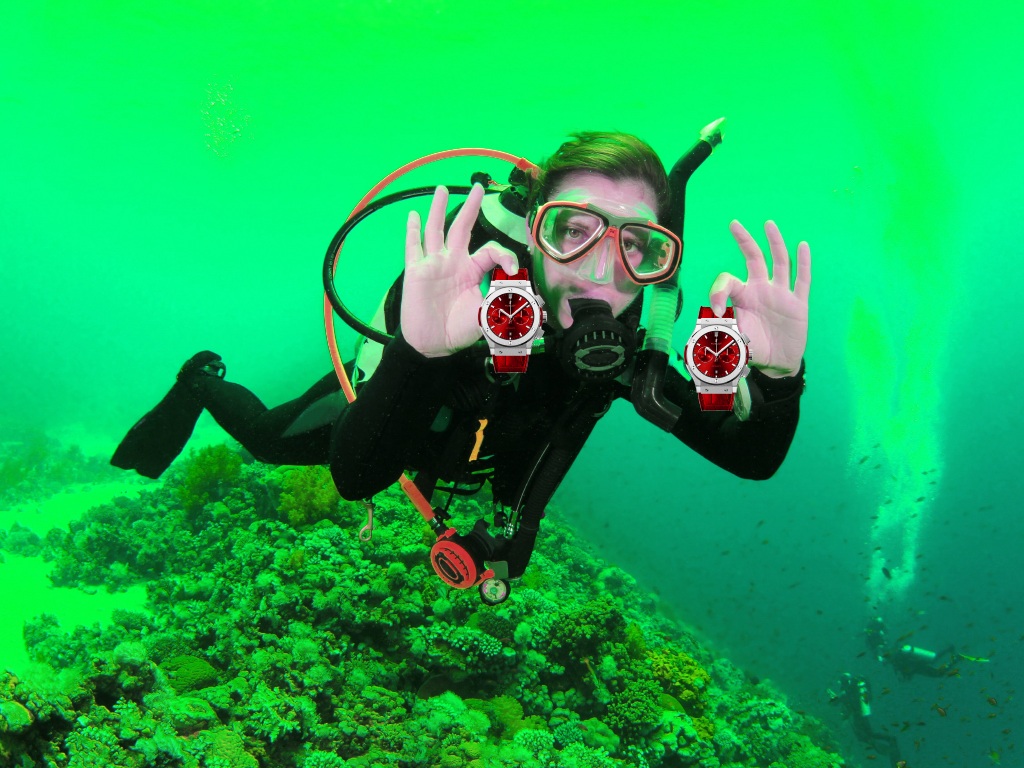 pictures/Diver.png